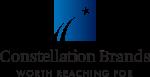 2020 Constellation Logo